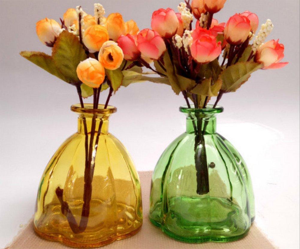 Blue Ruikey Hyacinth Hydroponics Small Glass Vase Transparent