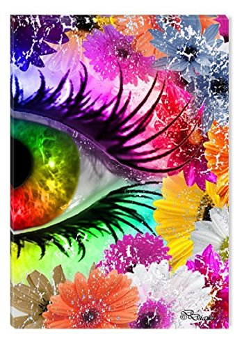 Startonight Wall Art Canvas The Colors of Eye II by Diana, Abstract USA Design for Home Decor, Dual View Surprise Artwork Modern Framed 23.62 X 35.43 Inch 100% Original Art Painting!