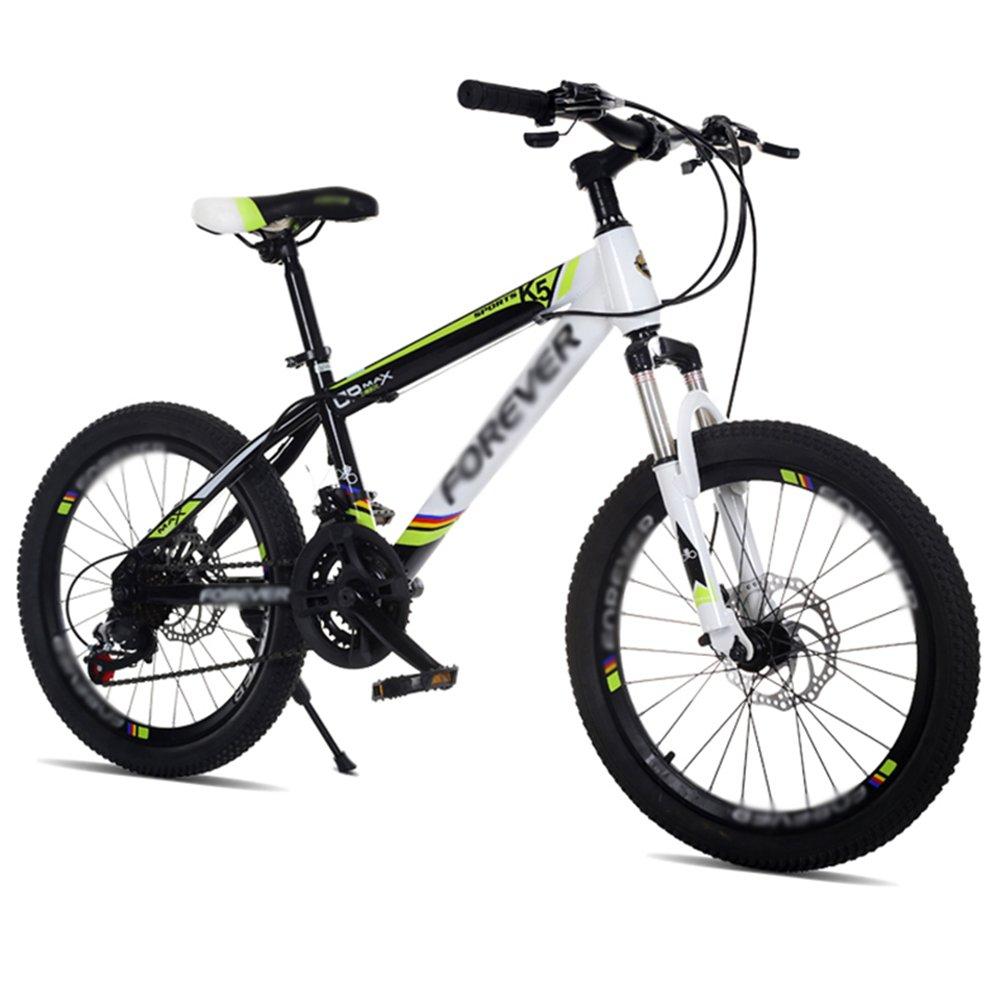 HAIZHEN マウンテンバイク 子供用自転車 青赤緑 20インチ アウトドアアウト スピードマウンテンバイクを変更する 新生児 B07CCHFVGZ 緑 緑