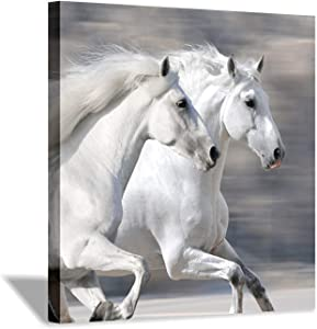 Hardy Gallery White Horse Picture Wall Art: Running Animal Artwork Painting Print on Wrapped Canvas for Living Room or Office (24'' x 24'')