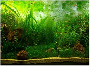 Aquarium Fish Tank Background Poster PVC Adhesive Decor Paper Green Water Grass Aquatic Style Like Real(24.02x11.81in)