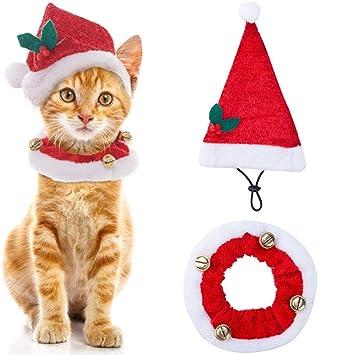 Amazon.com: scenereal Navidad gorros de Papá Noel y collar ...