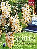 capa de Orquídeas Dendrobium - Volume 10. Coleção Rubi