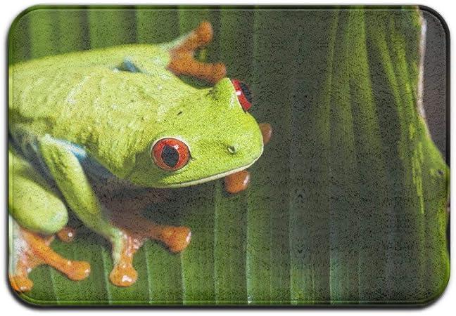 Kenice Doormats Rug Frog Casual Anti-Skid Runner Floor Rug Front Door Mat Inside Outside Mat Rug Pads: Amazon.es: Hogar