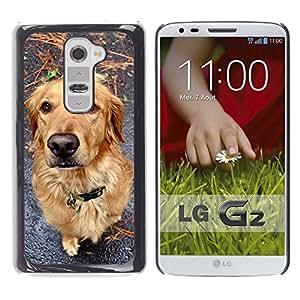 Golden Retriever Autumn Fall Dog Canine - Metal de aluminio y de plástico duro Caja del teléfono - Negro - LG G2 D800 D802 D802TA D803 VS980 LS980