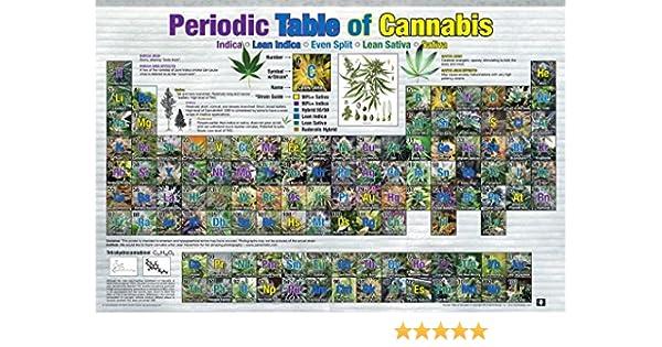 24 x 36 WEED POT MARIJUANA CHART LIST PERIODIC TABLE OF CANNABIS POSTER