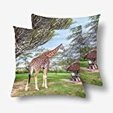 InterestPrint Eastern Africa Giraffe Sunny Day Pillowcase Throw Pillow Covers 18x18 Set of 2, Pillow Sham Cases Protector for Home Couch Sofa Bedding Decorative