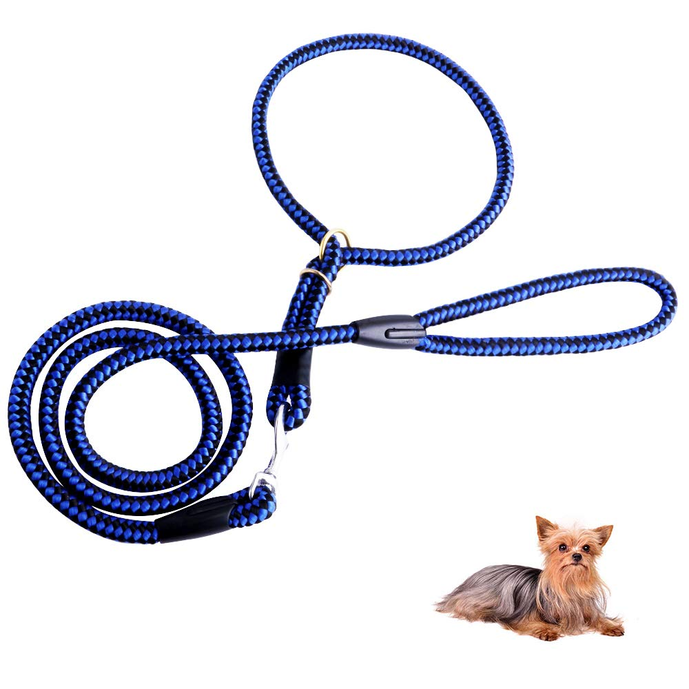 DAPTSY 4 FT Nylon Dog Leash and Collar Set for Small Medium Dogs Adjustable Rope Collar for Different Size Dogs Nylon Training Lead Soft and Lightweight