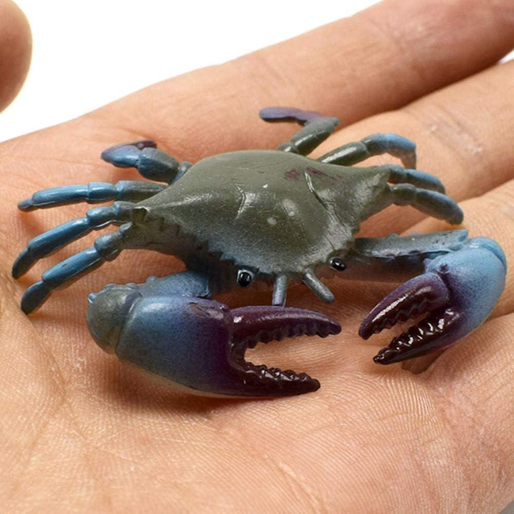 Aofocy Jouets en Plastique pour Enfants mod/èle Jouet Jouet Crabe de 8 pi/èces Multicolore