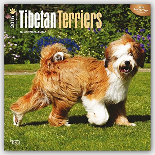 Download Tibetan Terriers 2016 Square 12x12 (Multilingual Edition) PDF