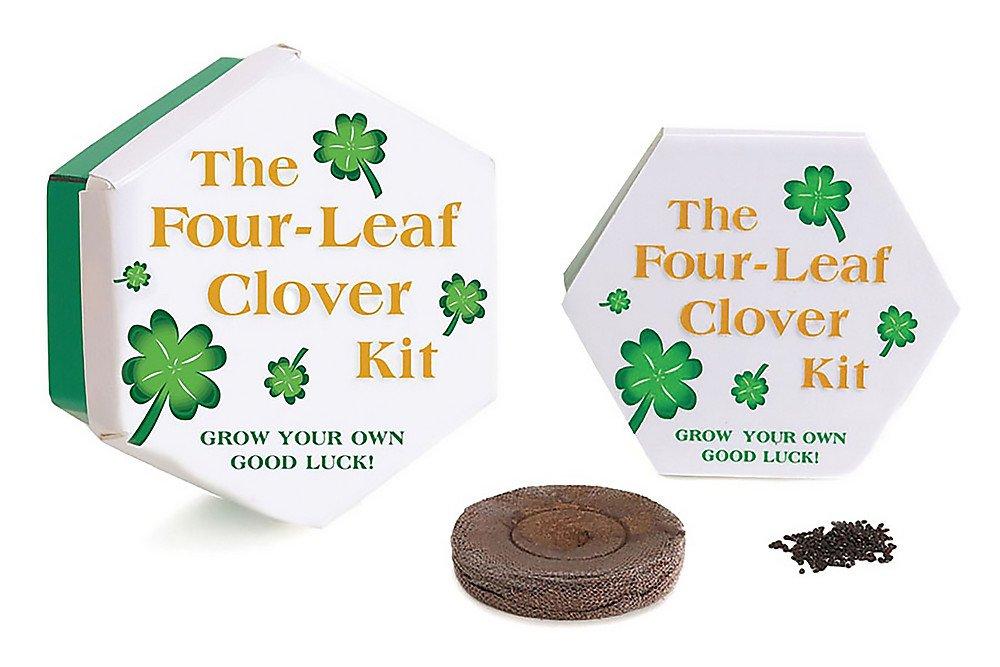 The Four Leaf Clover Kit Miniature Editions Pamela Liflander