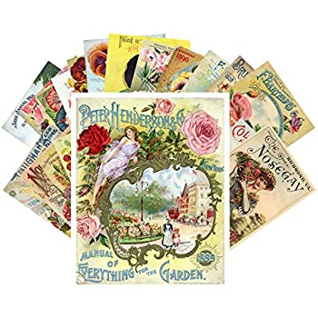 Symbol Of The Brand 32pcs Retro Flower And Plant Vintage English Material Paper Set For Scrapbooking Diy Projects/photo Album/card Making Crafts Stationery Stickers