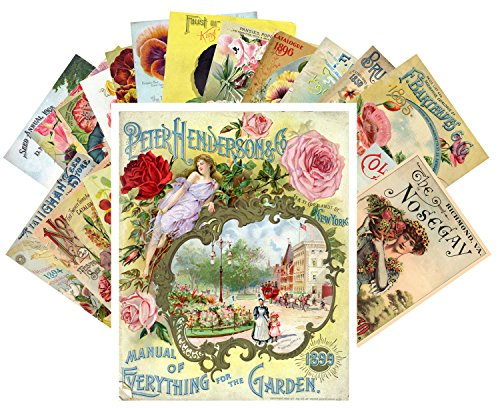 Postcard Set 24 cards Flowers Vintage Seed Pockets Gardens Pansies