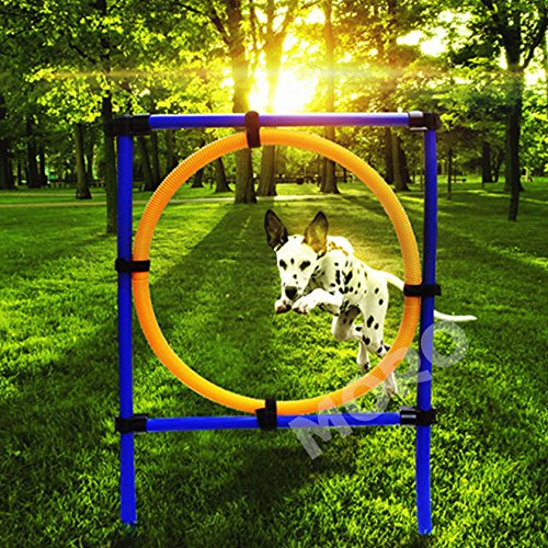 ZOIC Pet Dogs Outdoor Games Agility Exercise Training Equipment-Jump Hoop Obedience Show Training For Doggie