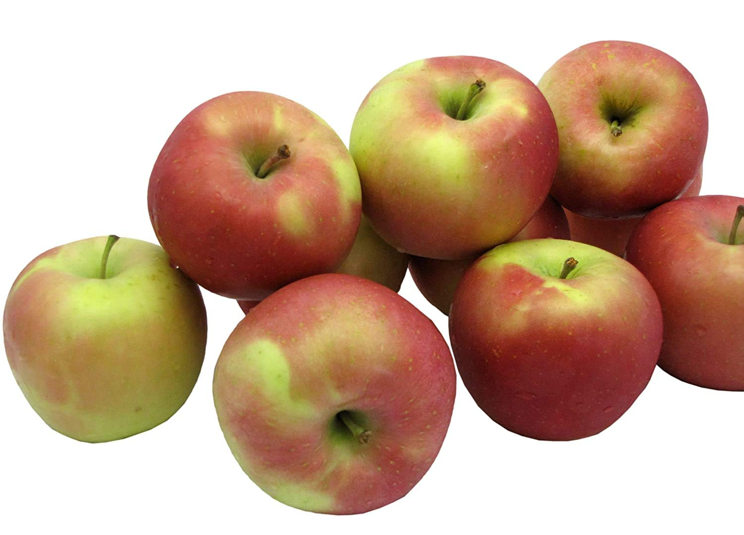 Kauffman Orchards Homegrown Fuji Apples, Fresh-picked in Lancaster County, Pennsylvania (Box of 16)