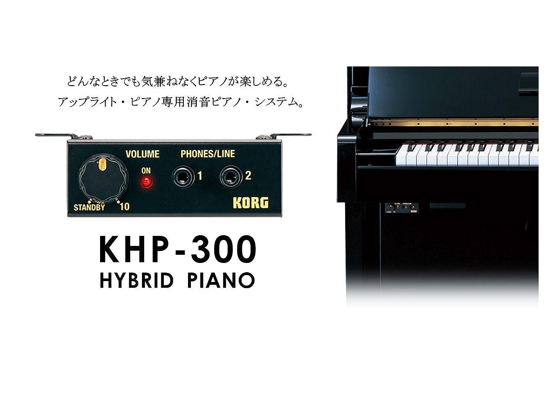 【本体+取付+出張費込み】コルグ/KORG 消音ユニット KHP-300 アップライト ピアノ専用サイレント装置   B00YKJ6H8Q