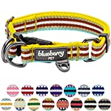 "Blueberry Pet 15 Colors 3M Reflective Multi-colored Stripe Dog Collar, Yellow Azure and Brown, Medium, Neck 14.5""-20"", Adjustable Collars for Dogs"