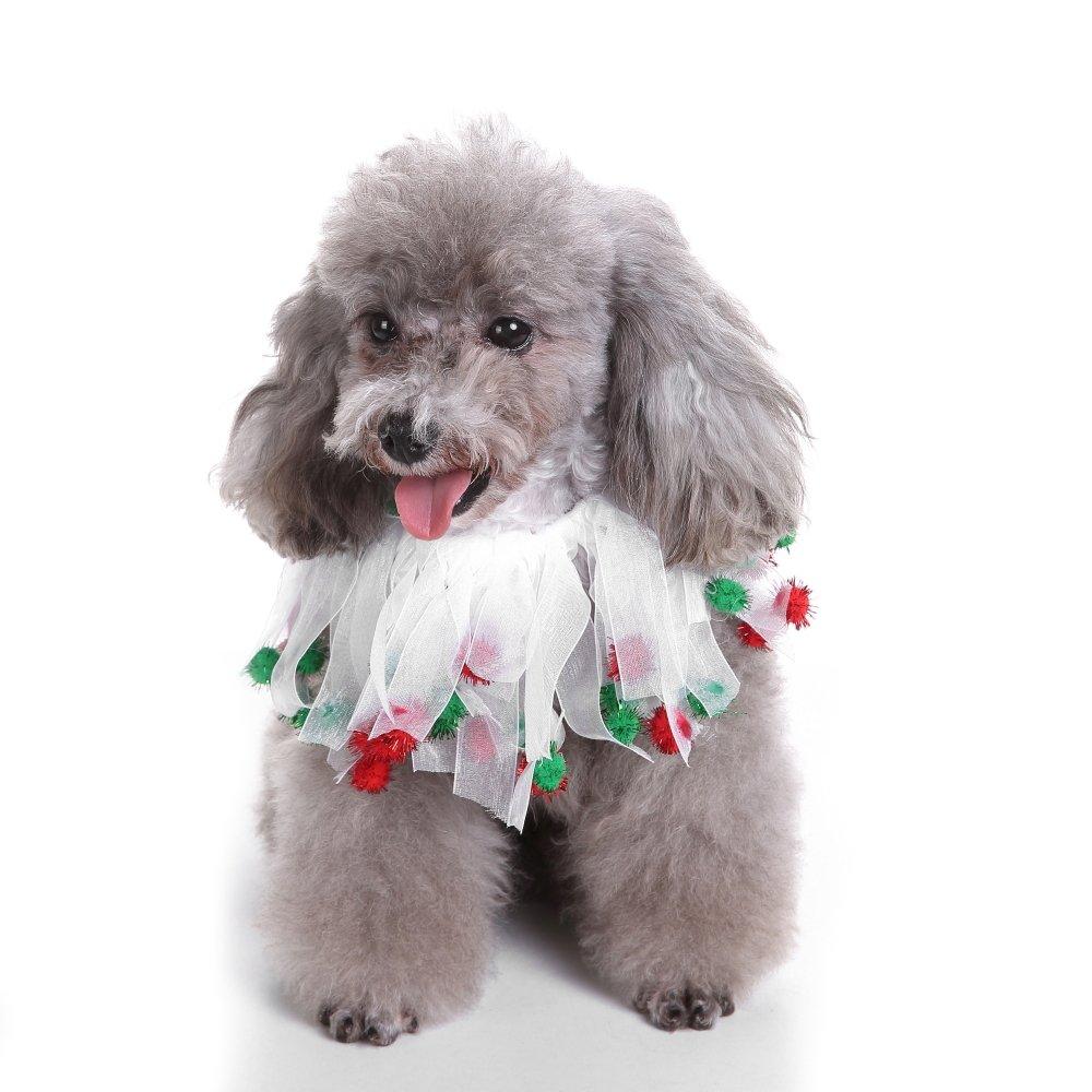 Werse Pet Suministros De Navidad/Cinta De Halloween/Bufanda Sombrero De Navidad - Sombrero De Barba - L: Amazon.es: Productos para mascotas