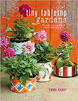 Book Tiny Tabletop Gardens: 35 projects for super-small spaces_outdoors and in