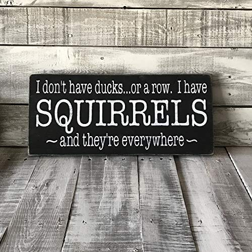 I Don't Have Ducks or a Row I Have Squirrels and They are Everywhere Rustic Reclaimed Funny Quote Plaque Home Decoration Sign for Women Men