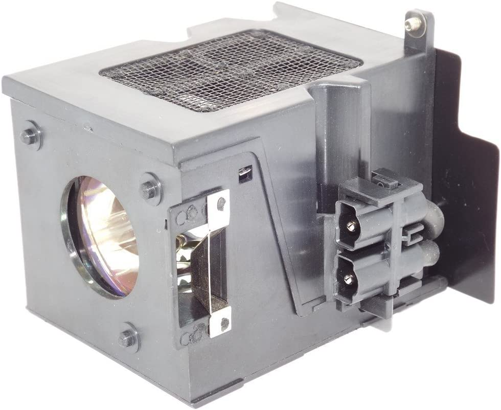 Original Ushio 60.J2104.CG1 Lamp /& Housing for BenQ Projectors 180 Day Warranty