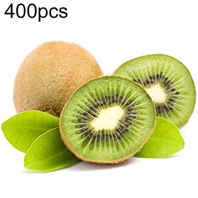Mggsndi 400Pcs Kiwi Seeds Non-GMO Vegetable Fruit Plant Easy Grow for Garden Farm Field Potted Kiwi Seeds : Garden & Outdoor