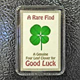 Good Luck Fridge Magnet with Real Genuine Four Leaf Clover