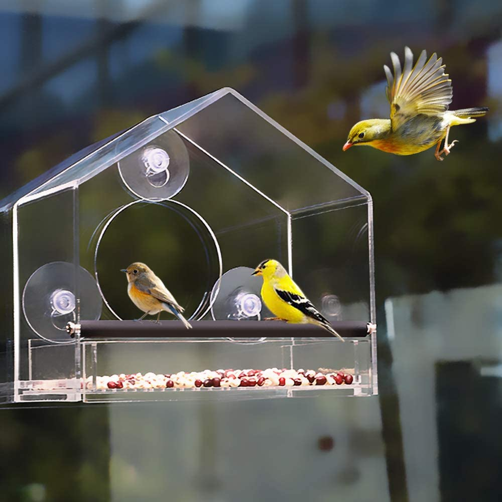Homes Garden Window Bird Feeder w/Strong Suction Cups and Removable Seed Tray, Easy to Clean