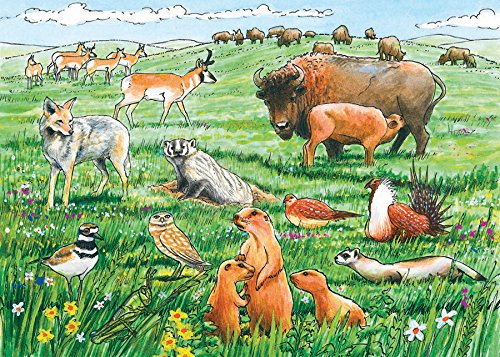 Life in the Prairie Puzzle