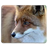 fox mouse pad - dealzEpic - Art Mousepad - Natural Rubber Mouse Pad Printed with A Fox - Stitched Edges - 9.5x7.9 inches