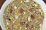 Spring Hill Nursery No-Waste Bird Seed Mix - 4 lbs