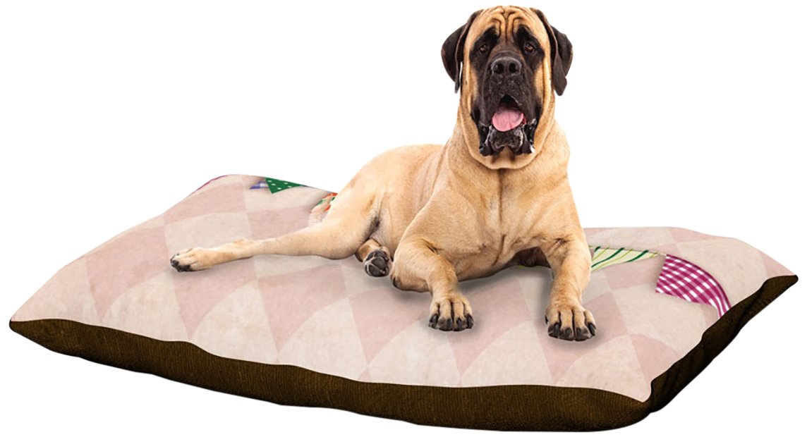 Flags 2 XLarge 40  x 50 Kess InHouse KESS Original Life is Art  Dog Bed, 50 by 60Inch