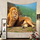 Gzhihine Custom tapestry Africa Tapestry A Lion Lying and Resting on the Top of the Mountain Digital Print for Bedroom Living Room Dorm 80WX60L Light Coffee and Fern Green