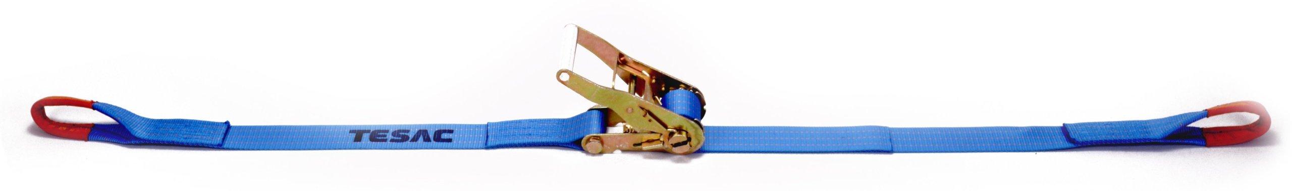 Tesac Corporation (TESAC) lashing belt ratchet buckle R30E belt width 50mm 010-025A