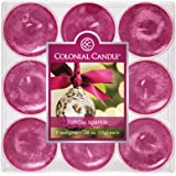 Colonial Candle Holiday Sparkle Tealights, Set of 9