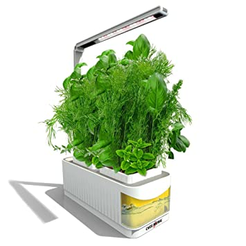 hydroponic herb garden. Indoor Hydroponic Herb Garden Kit Lamp, Smart Fresh Hydroponics LED Growing System,
