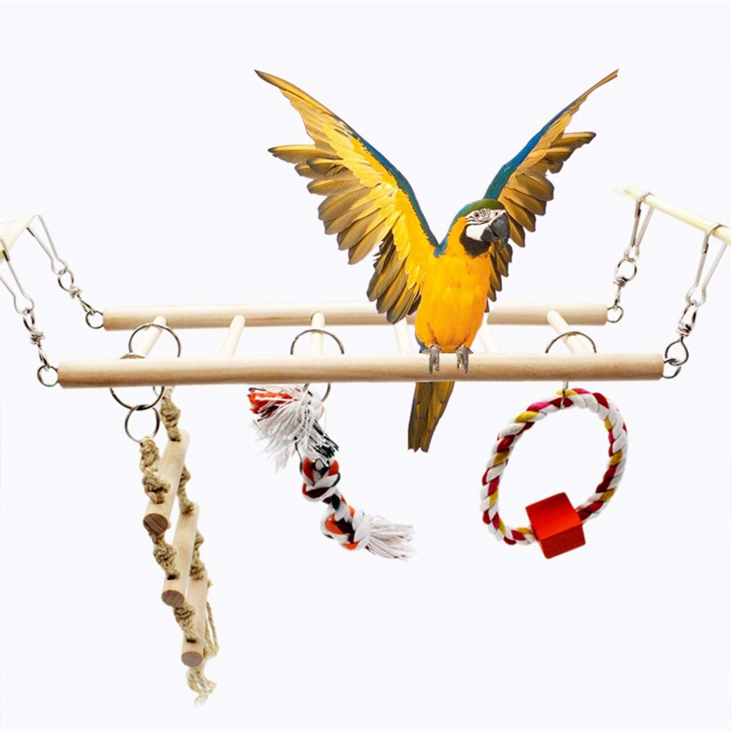 Bird toy Birds Parrot Climbing Chew Toys Birds Stand Swing Hanging Decoration for Cockatiel Bird Swing Toy Parakeet by Bird toy