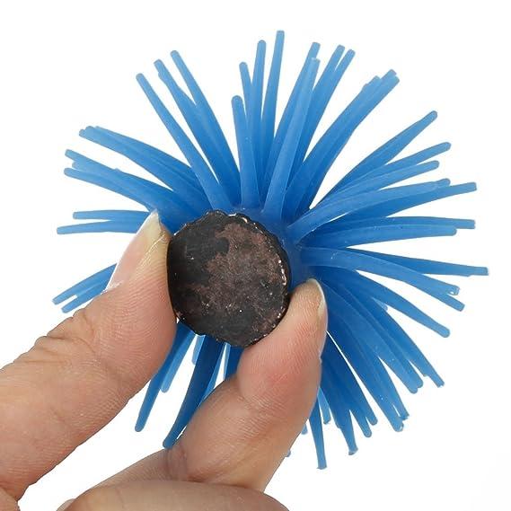 Amazon.com: eDealMax silicona acuario pecera Coral Artificial Planta Decoración Azul 2pcs: Pet Supplies