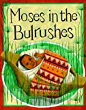 Moses in the Bulrushes, Mary Auld and Diana Mayo, 0531153878