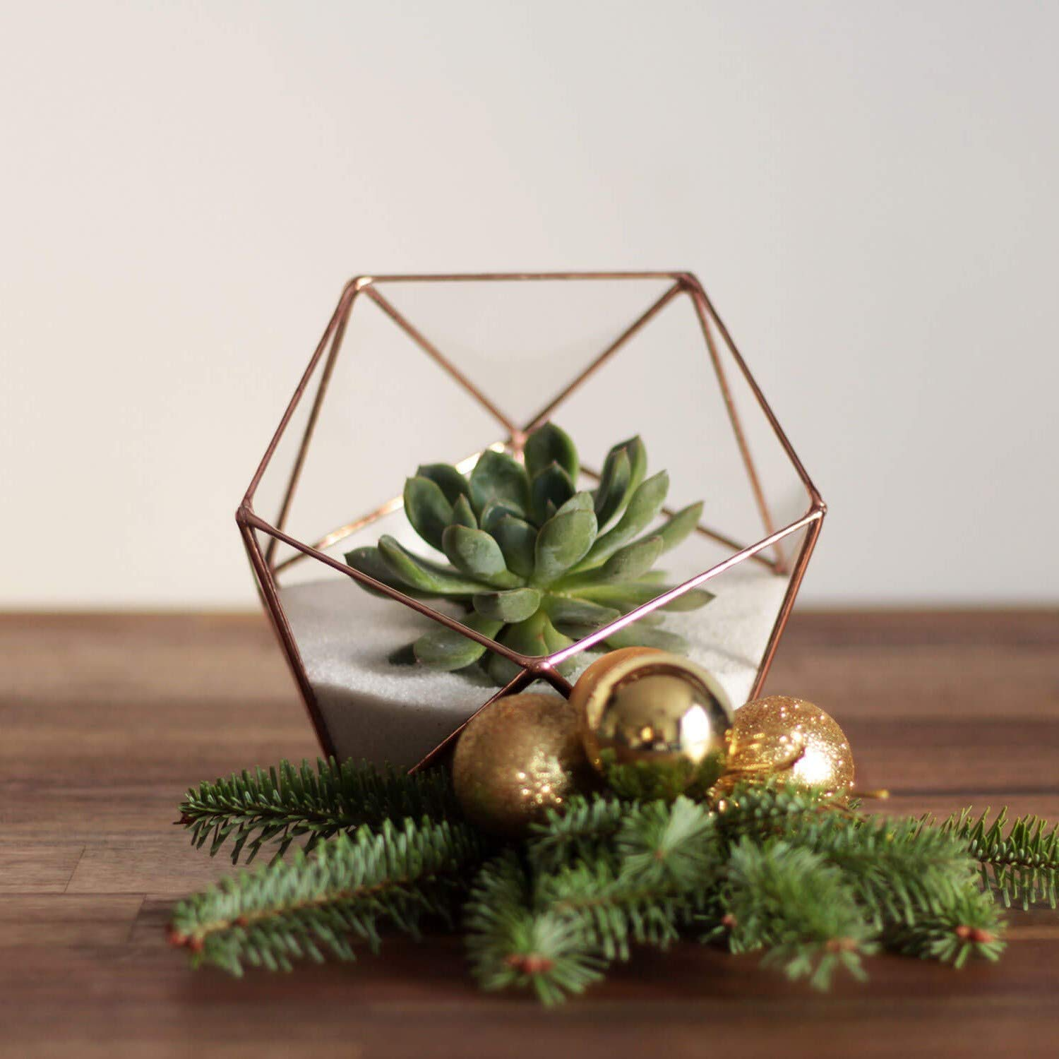 Valentines Day Gift Gift for Gardener Wedding Decor Copper, Silver, Black Clear Glass Geometric Terrarium Container Table Centerpiece Modern Planter for Indoor Gardening Dodecahedron