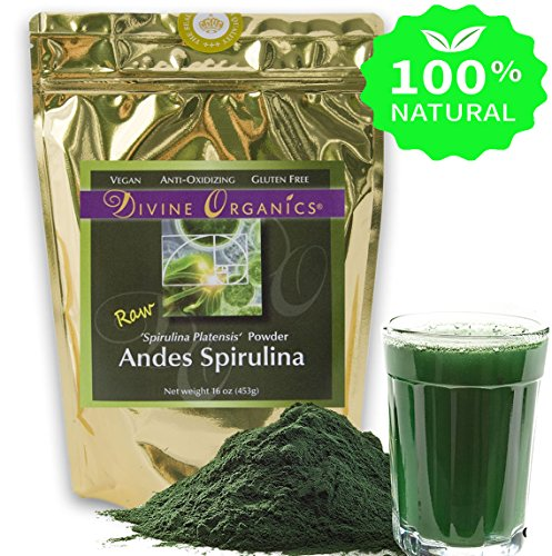 Australian Culture Costumes (Transition Nutrition 16 oz Spirulina Powder (Inca) Raw Andes Mountains - Vegan and Gluten Free - Raw and Organic)