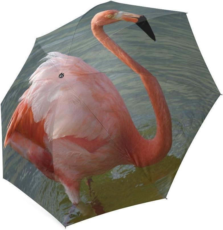 Custom Flamingos Compact Travel Windproof Rainproof Foldable Umbrella