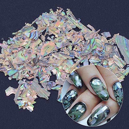 - Nail Art Shell Irregular Fragment 3D Charm Decoration Slice DIY Beauty Nail Decals For UV Gel Acrylic Nails