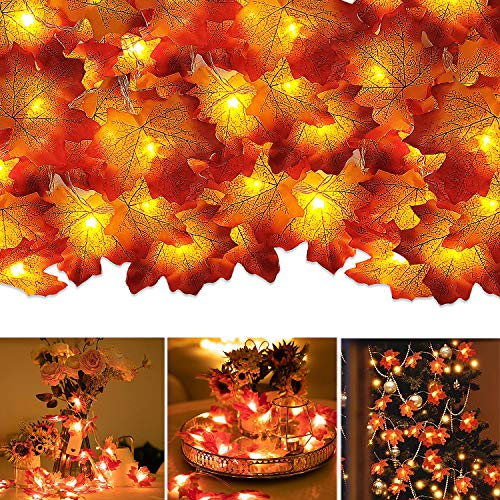 Noverlife 19.7ft/6m 40 LED Fall Maple Leave String Light, Battery-Operated, Autumn Orange Artificial Maple Leaves Hanging Vine Garland Lamp for HalloweenThanksgiving Christmas Holiday Party Decor from Noverlife