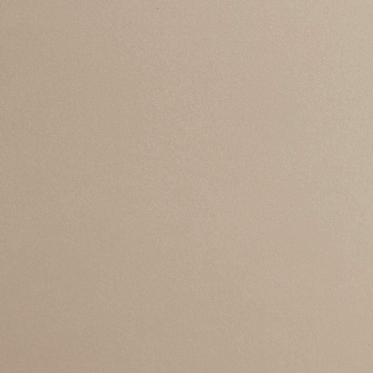 Tablero DM, 50 x 22,8 x 3,4 cm Color Roble Claro 50 x 22,8 x 3,4 cm Tablero//Madera DM ModulHome 6RAN791BC Estanter/ía para Colgar