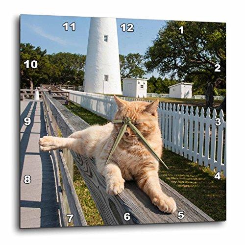 North Carolina Desk Clock - 3dRose Danita Delimont - Cats - Ocracoke Island Light Station, Outer Banks, North Carolina, USA. - 15x15 Wall Clock (dpp_259813_3)