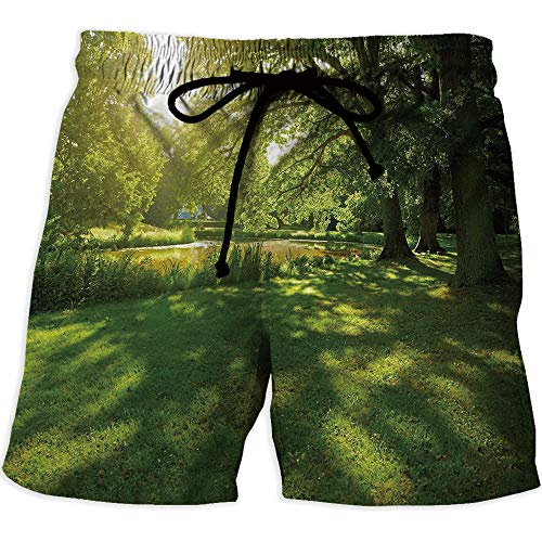 Quick Dry Beach Shorts with Pockets Mesh Lining Swim Short,GreenMen's Board Short SwimwearSummer Park in Hamburg Germany Trees Sunlight Forest Nature Theme Scenic Outdoors Picture ()