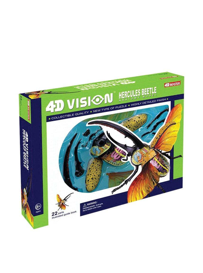 Amazon.com: TEDCO 4D Vision Hercules Beetle Anatomy Model: Toys & Games