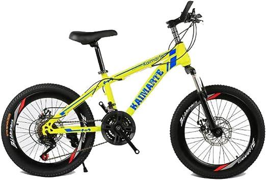 HUALQ Bicicleta 20 Pulgadas Bicicleta de montaña 21 Velocidad 24 Velocidad 27 Velocidad Doble Disco Freno Estudiante Bicicleta de montaña niño Coche Bicicleta de Carretera: Amazon.es: Jardín