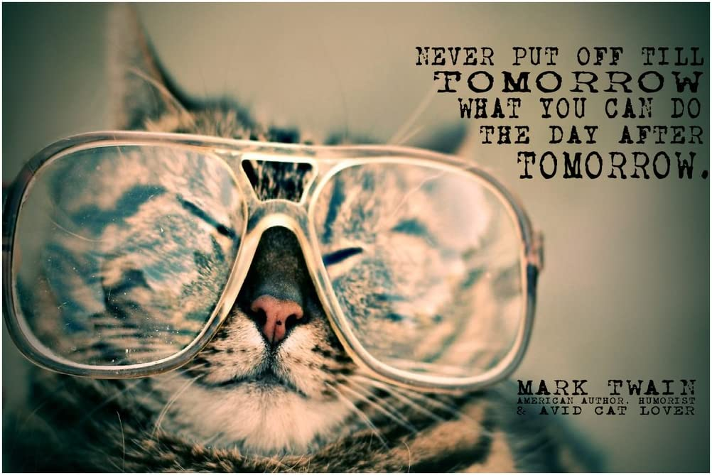Never Put Off Till Tomorrow - Mark Twain Quote Poster Wall Print Funny Inspirational Motivational Classroom Home Office Dorm 18 X 12 in SJC143